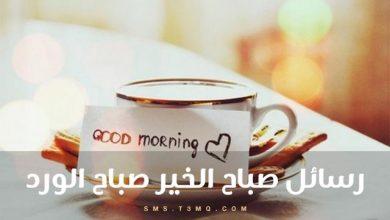 Photo of رسائل صباح الخير صباح الورد