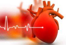 Photo of طرق الوقاية من الجلطة القلبية