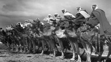 Photo of معلومات عن الثورة العربية الكبرى