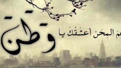 Photo of موضوع تعبير عن الوطن وواجبنا نحوه