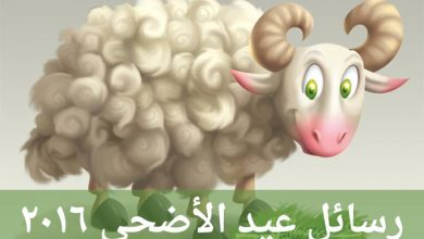 Photo of رسائل عيد الاضحى