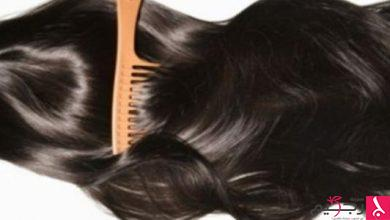 Photo of وصفات طبيعية لتطويل الشعر