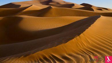 Photo of لماذا سميت صحراء الربع الخالي بهذا الاسم؟