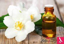 Photo of فوائد زهرة الياسمين للصحة والجمال