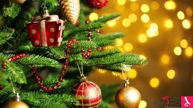 Photo of حكم اقتناء شجرة الكريسماس