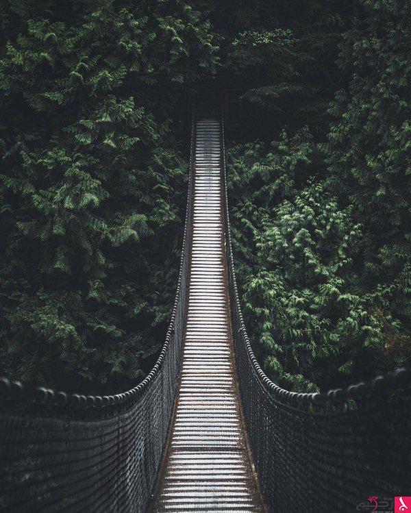 بالصور تعرف على جسر النسيان