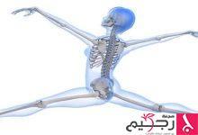 Photo of كيفية تطويل العظام