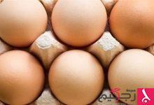 Photo of كم بيضة يمكن أن تأكل في اليوم؟