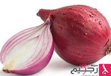 Photo of البصل يدعم المضادات الحيوية في محاربة السل