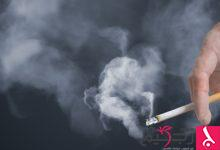 Photo of دراسة حديثة: تدخين سيجارة واحدة في اليوم فقط قد يؤدي إلى الوفاة!