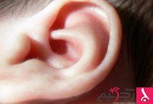Photo of حقائق الأذن الوسطى
