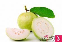 Photo of فوائد ورق الجوافة