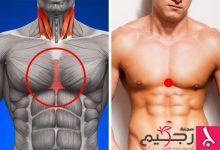 Photo of لإسراع التخسيس والتمثيل الغذائي.. اضغط على هذه المناطق في جسمك
