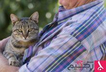 Photo of دراسة حديثة: تربية الحيوانات الأليفة علاج جيد لمن يعانون من حالات نفسية