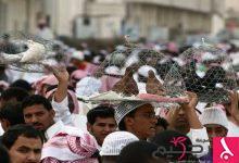 Photo of السعودية تسجل إصابات بإنفلونزا الطيور