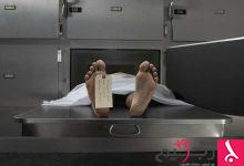Photo of العلماء يكشفون إمكانية العودة إلى الحياة بعد الموت!