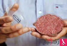 """Photo of عالم يطرح فكرة مثيرة للجدل حول """"أكل لحوم البشر"""""""