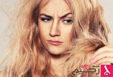 Photo of زيت الزيتون والكيوي.. علاج سحري للشعر التالف