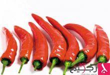Photo of الفلفل الحار الأحمر يحرق السعرات الحرارية