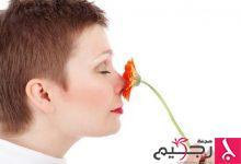 Photo of طبيب البوابة:5 علاجات طبيعية للزوائد اللحمية في الانف