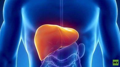 Photo of اكتشاف طريقة لتجديد خلايا الكبد