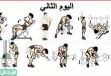 Photo of تخلص من آلام العمود الفقرى مع تمارين الظهر بالترتيب