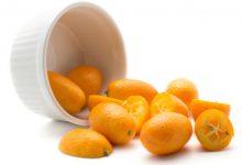 "Photo of تعرف على فاكهة الكيمكوات ""برتقال ياباني"""