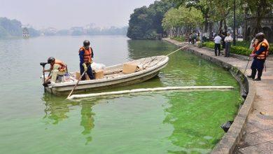 Photo of طحالب سامة تحول لون بحيرة مشهورة في فيتنام إلى الأزرق