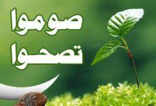 Photo of فوائد الصيام لتنقية الجسم من السموم