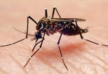 "Photo of ""حمى قاتلة"" قد تنتشر عبر ممارسة الجنس!"