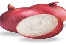 Photo of دراسة: البصل الأحمر يساهم في علاج السكري