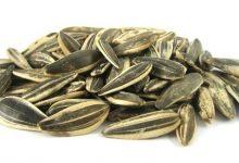 Photo of أطعمة نباتية غنية بالكالسيوم