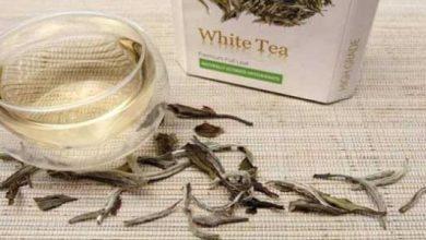 Photo of ما هو الشاي الابيض؟ وما هي فوائده الصحية؟