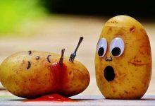 Photo of خبراء التغذية يحذرون من أخطار الحمية على الصحة!