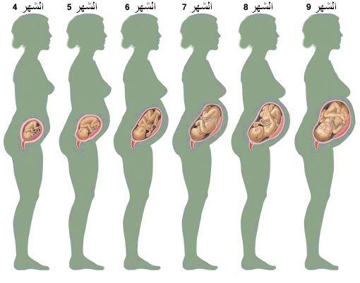 بداية حركة الجنين