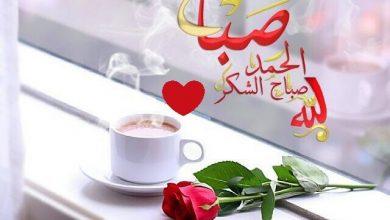 Photo of صباح الورد والرياحين