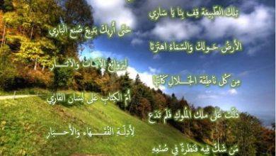 Photo of كلمات عن الطبيعة للسناب , كلام عن جمال الطبيعة , صور سناب للطبيعة