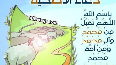 Photo of صور دعاء الاضحيه , شروط الاضحيه , مواعيد الاضحيه , صور دعاء الاضحيه