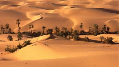 Photo of صور صحراء للتصميم,صور صحراء للمصممين