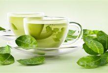 Photo of كم كوباً تحتاج من الشاي الأخضر يومياً؟