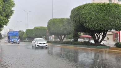 Photo of الأرصاد تصدر تنبيها متقدما حول هطول أمطار غزيرة على عسير