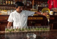 Photo of خبراء الأمم المتحدة يكشفون أضرار الكحول