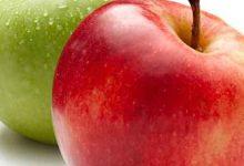 Photo of فوائد التفاح والفرق بين التفاح الأحمر والأخضر