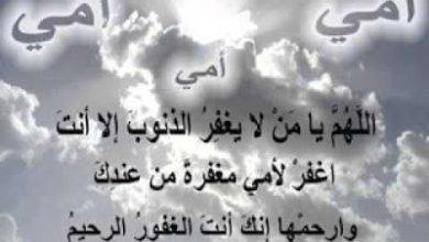 Photo of دعاء عن موت الأم . دعاء عن وفاة الام . دعاء للام
