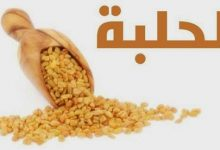 Photo of فوائد الحلبة