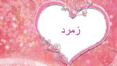 Photo of ابيات شعر باسم زمرد , معنى اسم زمرد