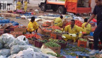 Photo of مصادرة أكثر من 30 عربة للباعة المتجولين في تبوك