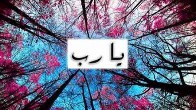 Photo of صور يارب , رمزيات يارب , صور مكتوب عليها يارب