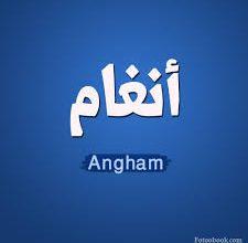 Photo of كلمات اغنية اهي جت – انغام Angham
