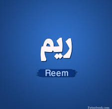 Photo of كلمات اغنية ريم مهرات عقرب حبك – Reem Mehrat